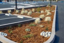 San Pablo Lytton Casino Parking Lot Bio-retention garden