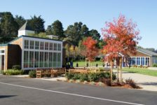 Mount Tamalpais School Campus Benches and Trees