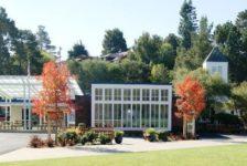 Mount Tamalpais School Campus - Lawn