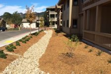 Spring Lake Village Senior Housing - Drainage and Landscaping