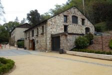 Buena Vista Winery Access Drive and Building