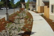 Sequoia Village Paved Pathway