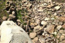 Diamond A Ranch Drainage Solution