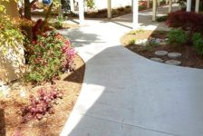 Spring Lake Village Senior Housing Central Pathway