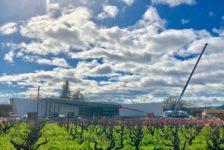 Aperture Cellars Vineyard Under the Clouds