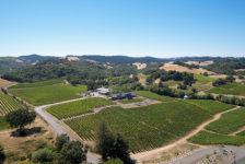 MacRostie Aerial View of Vineyard