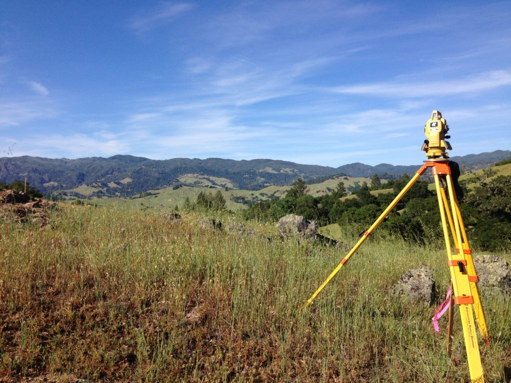 Land Surveyor Job