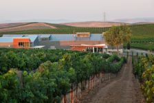 Cuvaison Estate Wines - Within the Vineyard