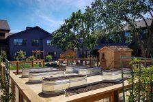 Altamira Family Apartment Garden Area
